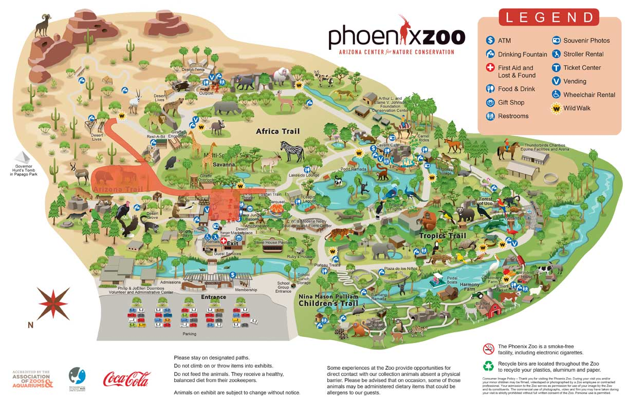 Phoenix Zoo offering discounted tickets during summer construction