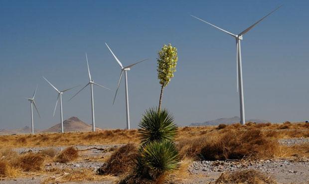 (Facebook Photo/Tucson Electric Power)...