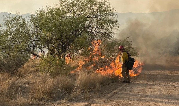 (Facebook Photo/Arizona Department of Forestry and Fire Management)...